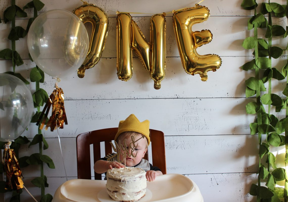 Wild One First birthday Party