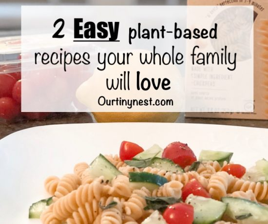 easy plant based recipes