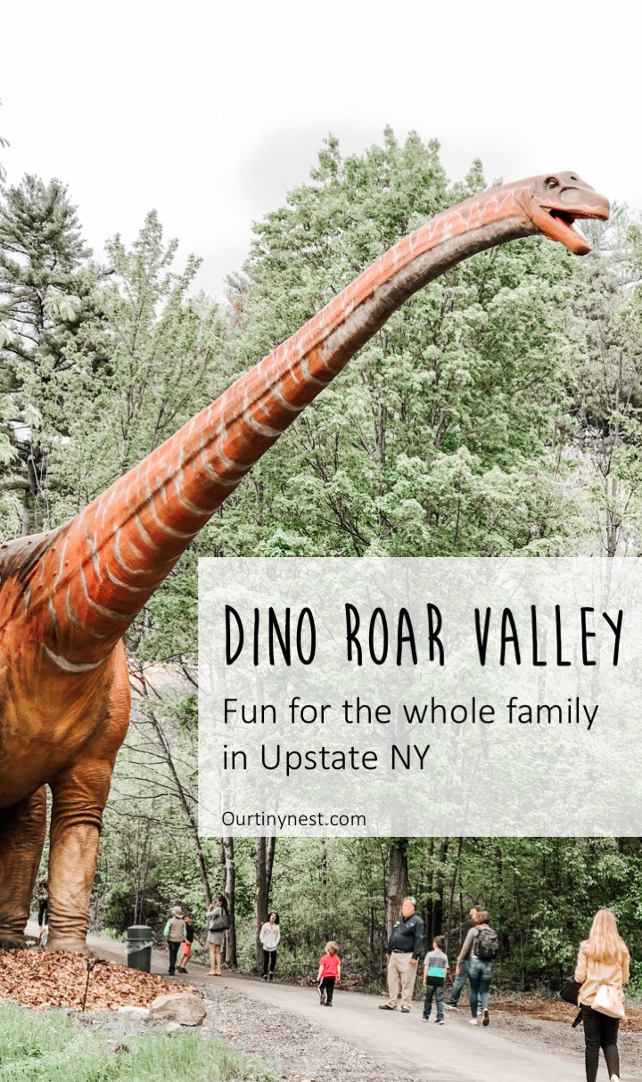 Dino Roar Valley