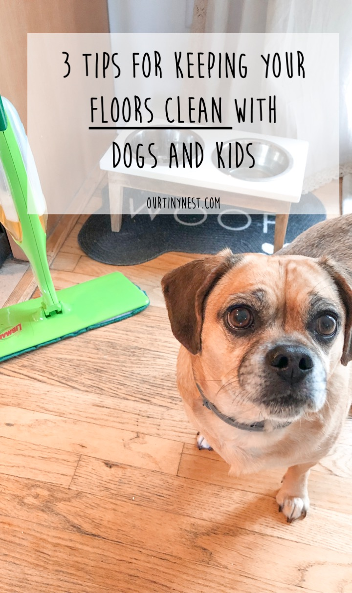 keeping your floors clean with dogs and kids